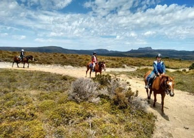 cradle-mountain-horseriding