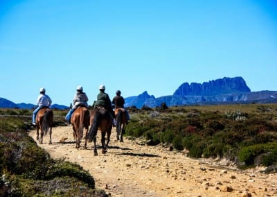 Cradle Mountain Horse Riding Tours