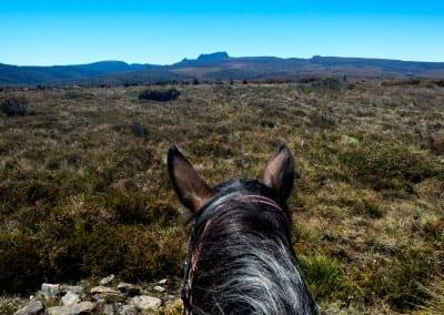 Cradle Mountain Horse Riding Tour to Speeler Plain