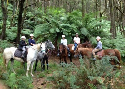 Trail Riding in Tasmania
