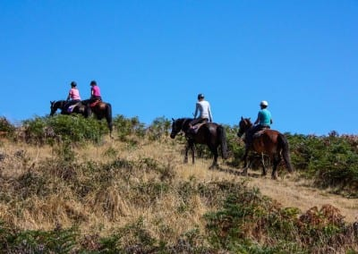 Cradle Mountain Horse Riding